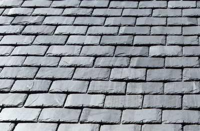 Wat is een natuurleien dak?