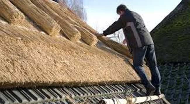Wat is een rieten dak?