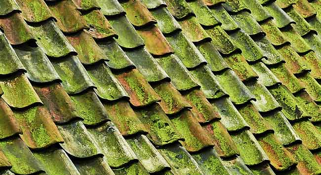 Wanneer moet je een dak vervangen of opnieuw bedekken